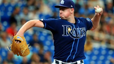 Photo of The Dog Days are Here; How do the Rays Stack Up?