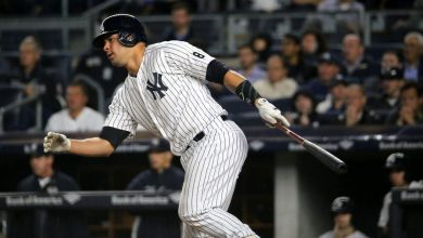 Photo of New York Yankees 2019 Season Preview