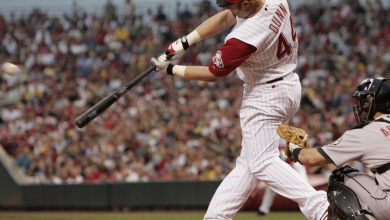 Photo of Adam Dunn – Baseball's Modern Pioneer