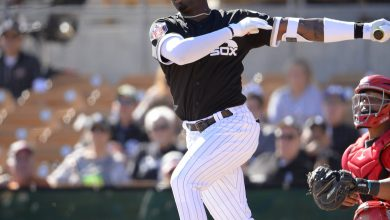 Photo of 4 White Sox Rank Among MLB Pipeline's Top 100 List